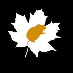 Icon Wühlmäuse - FreiLuft Kind